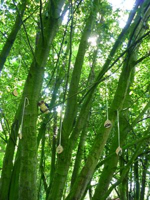 Pendants hanging in trees